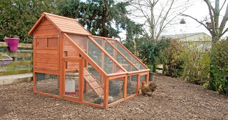 I really like the way this chicken coop looks