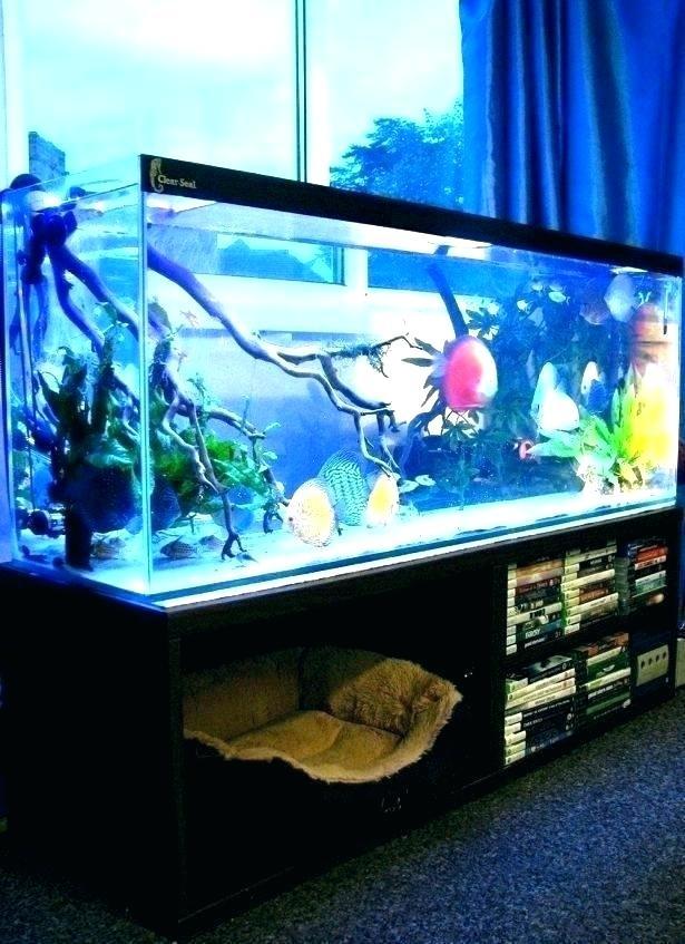 fish tank in bedroom fish tank bed in bedroom hotel best tanks images on aquariums aquarium