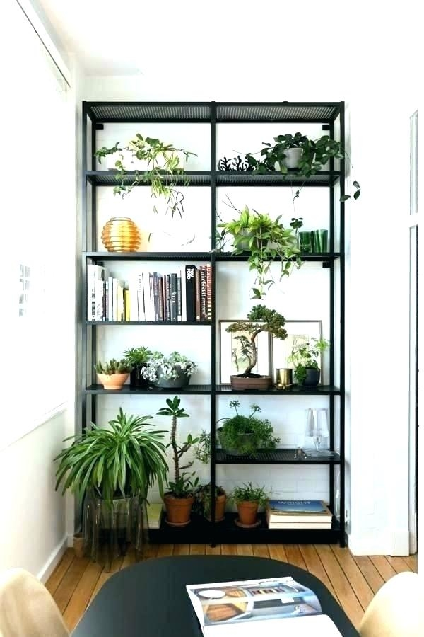 ideas for plant shelves shelf greenhouse bathroom ledge decorating pictures