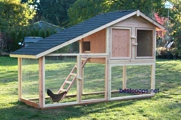 chicken house design